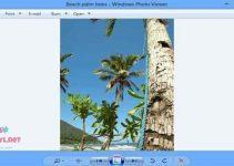 استعاده برنامج عرض الصور ويندوز 10